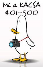 whattheduck-401-500